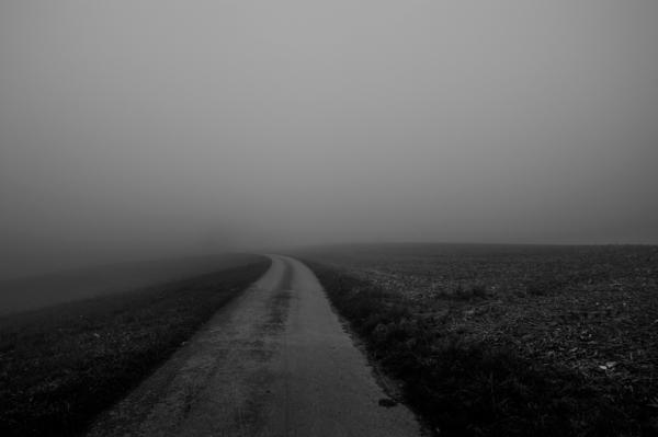 Fog_6385