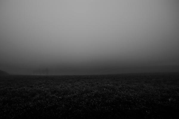 Fog_6388