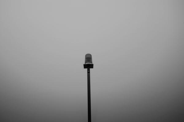 Fog_6393
